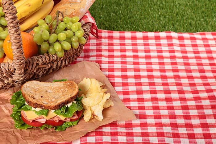 picnic definicion