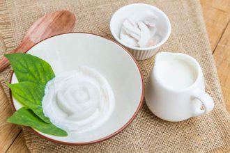ideas para hacer postres con leche de coco