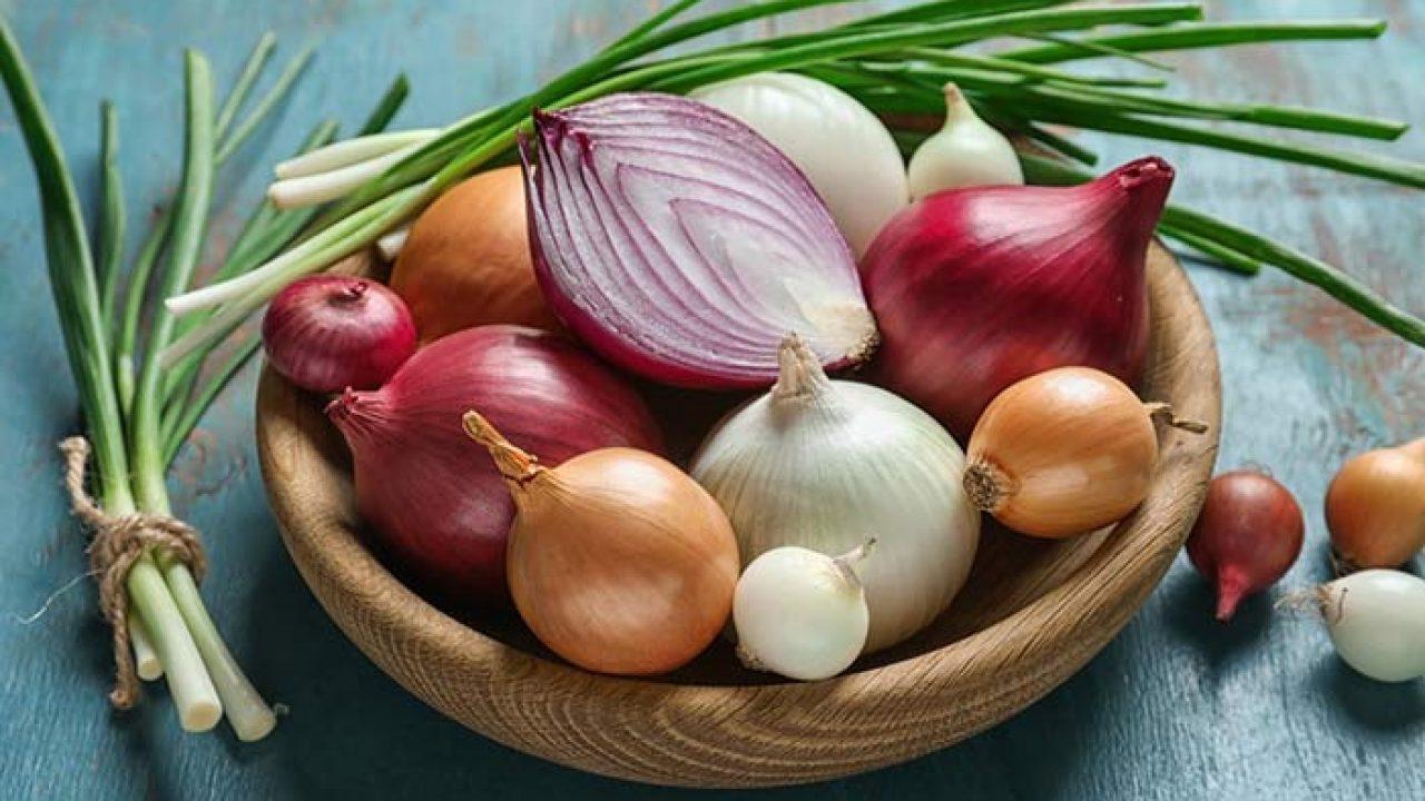 Cuántos tipos de cebollas existen y cómo cocinarlas? | Cocinar la ...
