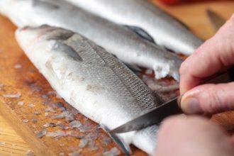 mejores tecnicas para limpiar pescado